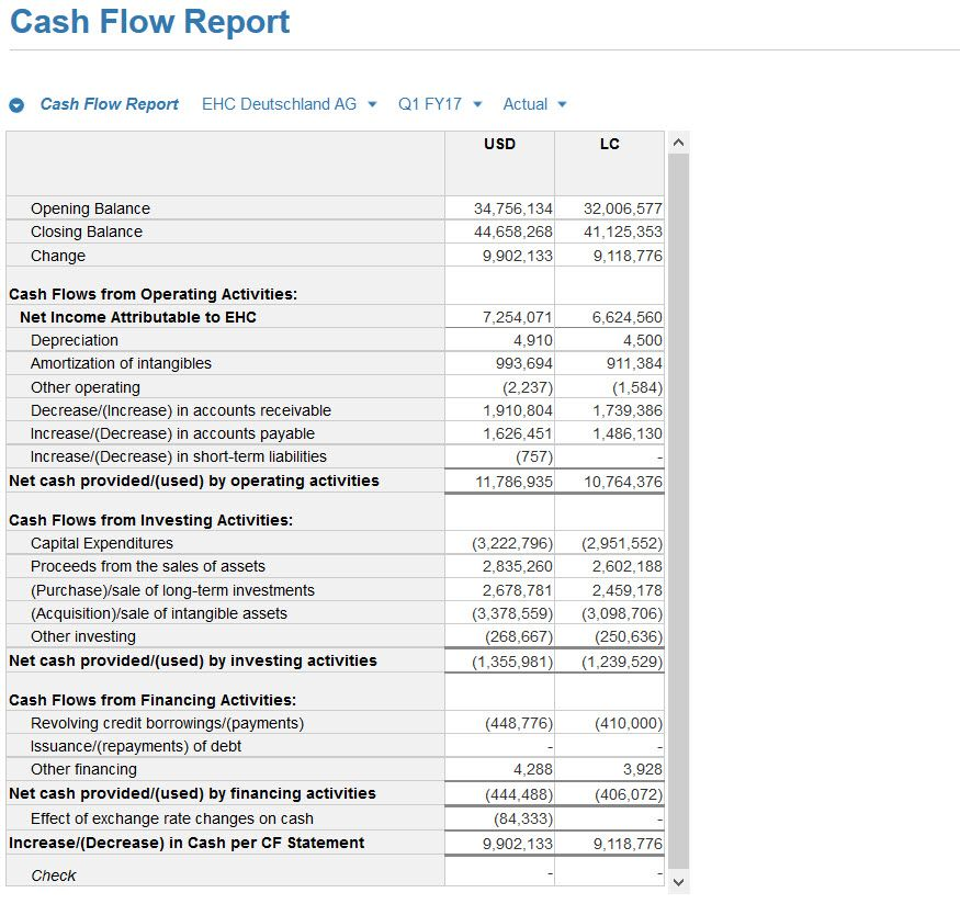 Cash Flow Screenshot 03.jpg