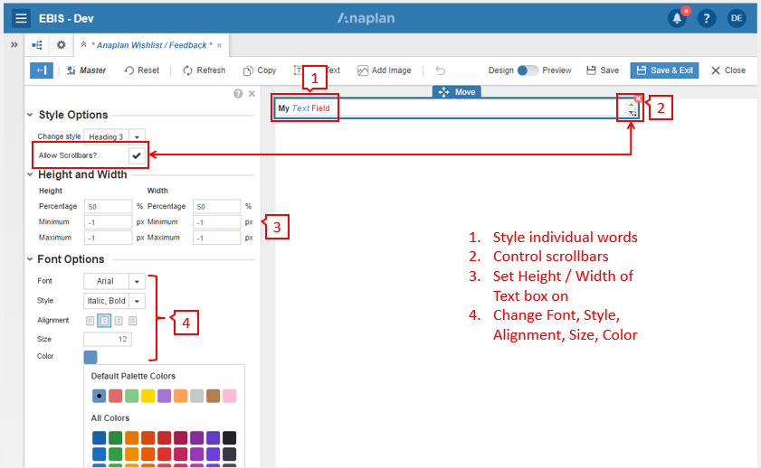 Anaplan - Text style options.PNG