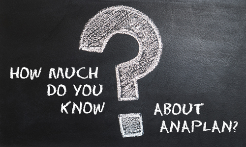 How Much Do You Know About Anaplan?