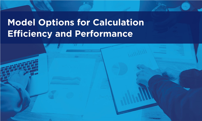 Model Options for Calculation Efficiency and Performance
