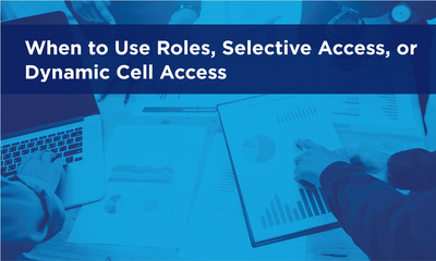 When to Use Roles, Selective Access, or Dynamic Cell Access