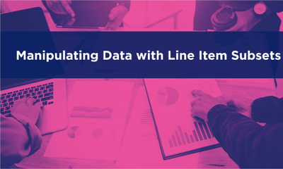 Manipulating Data with Line Item Subsets