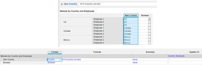 Module by country and employee.jpg