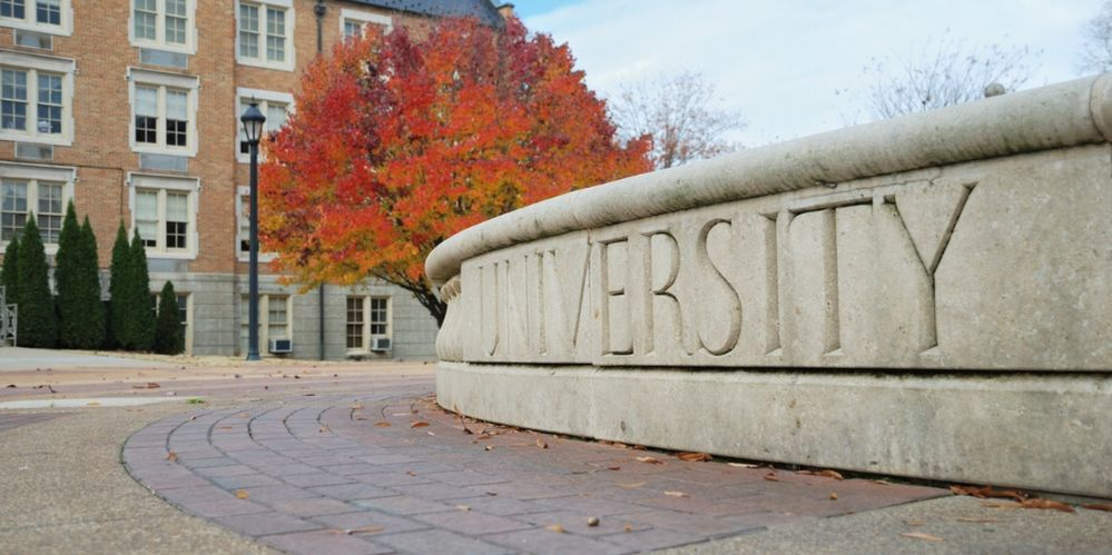 university-sign-in-fall-picture-id182240679 (1).jpg